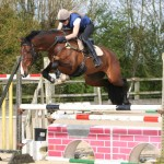 Oliver show jumping