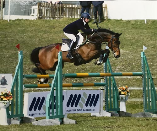 event horse for sale